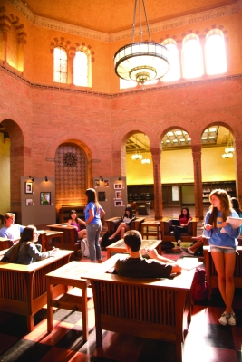 Studying in Powell Library